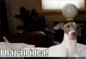 dog-idea