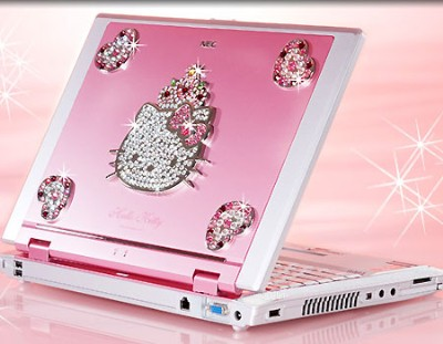 Google the Net with HELLO KITTY LAPTOP
